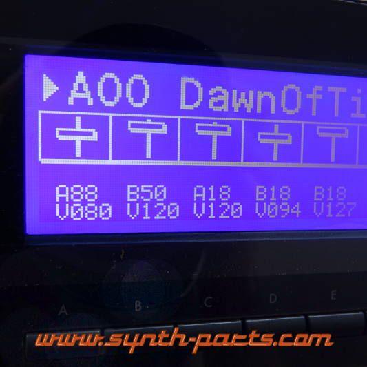 LCD Display Blau mit Kabel für Korg 01/W,01R/W
