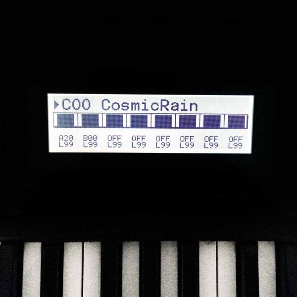 LCD Display weiß mit Kabel für Korg T1,T2,T3, Wavestation, i2, i3