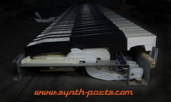 Tasten für Roland PA4 Tastatur