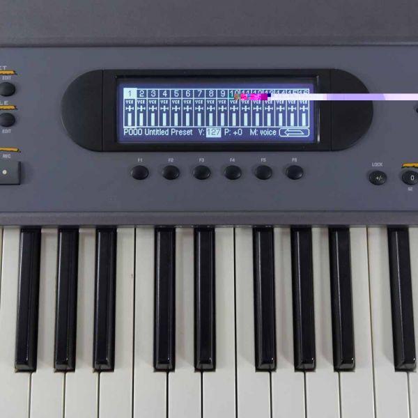 LCD Display Schwarz mit Kabel für E-mu E-IV
